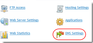 DNS Settings Icon