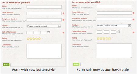 Changing the look of a Form in Website Publishing Tool